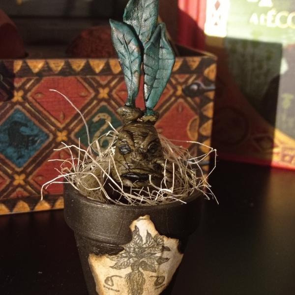 Création Mandragore + petit pot en terre – Créa by Fantasy Corner
